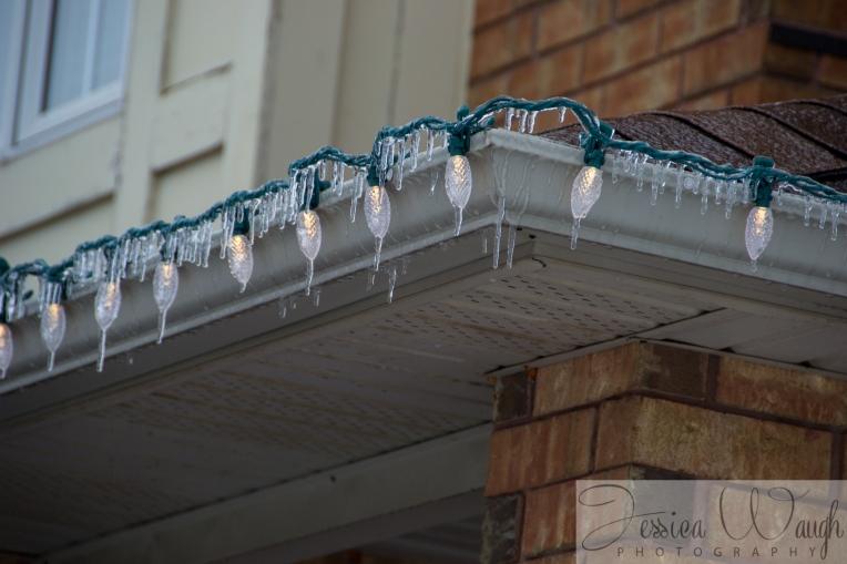Ice storm  (15 of 17)